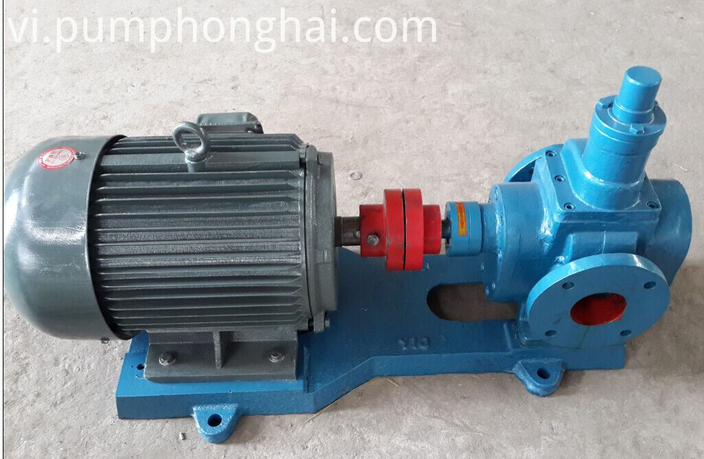 Transfer oil rotary gear pump (1)