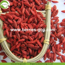 Goji Certified Organic Dried Nutrition Borong