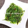 China Dalian Gaishi Wholesale japanese kosher sargassum seaweed salad for sushi foods