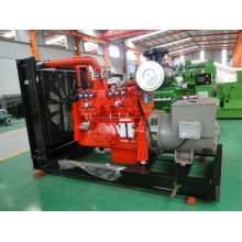 Diesel Generator Set with Cummins Engine 50kw/63kVA
