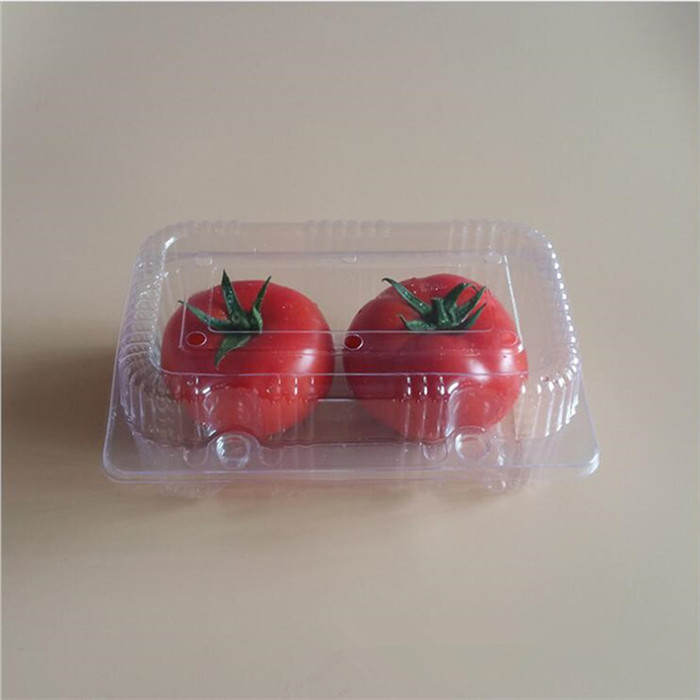 Plastic Tomatoes Packaging Container