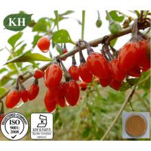 Extracto orgânico de Wolfberry Extracto Polysaccharides 10%, 15%, 20%, 40% por UV.