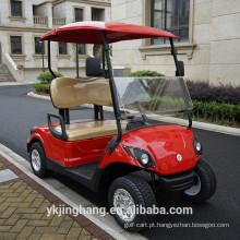 2018 venda quente 2 seater mini elétrico ou a gás alimentado carrinho de golfe com preços competitivos para venda
