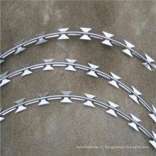 Hot DIP Galvanzied Razor Wire avec (CE et SGS)