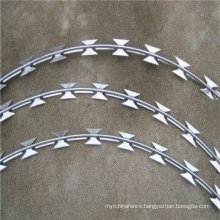 Hot DIP Galvanzied Razor Wire with (CE and SGS)
