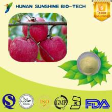 Poudre instantanée naturelle de pomme sans additifs pour des boissons et des boissons