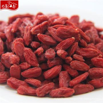 2017 red new wholesale himalayan goji berry