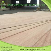 Bbcc madera contrachapada comercial del álamo de grado 9m m con precio barato