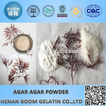 medical agar powder