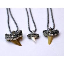 Genuine Shark Dentes Natural Gemstone Pedra Colar Pingente Jóias para Homens e Mulheres