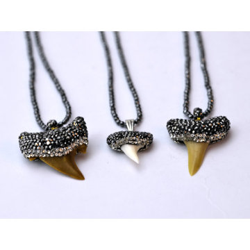 Genuine Shark Teeth Natural Gemstone Stone Necklace Pendant Jewelry for Men and Women