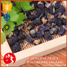 Low price guaranteed quality black wolf berry