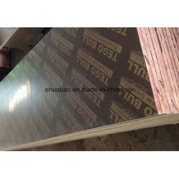Premium Tego Film Faced Plywood Combined Core Phenolic Glue