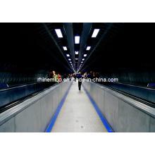 Caminhada movimentada de passageiros de alto desempenho (GRM20)