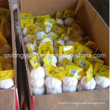 Emballage de carton Ail blanc frais et blanc