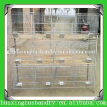 Les dernières cages d'élevage d'oiseaux / cage d'élevage d'oiseaux