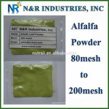 Poudre d'herbe d'alfalfa pure et droite 80mesh à 200mesh sans Dextrine