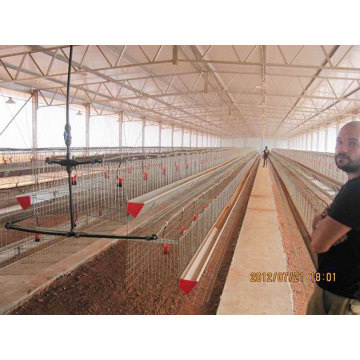 Poultry House/Steel Structure Chicken Farm (PCH-14325)