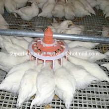 Équipement automatique d'élevage de volaille pour la ferme d'éleveur