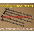 Vis de toiture en acier inoxydable Tek Screw
