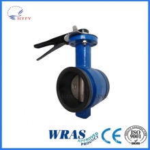 Modern design pneumatically actuated wafer butterfly valve