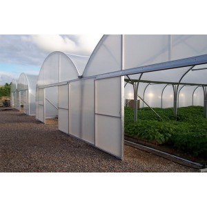 China Factory Price Film Cover Greenhouse