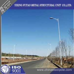 6M Single Arm Outdoor Lighting Pole