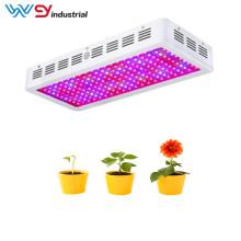 Lámpara de cultivo de 2000W de alta calidad para plantas de interior