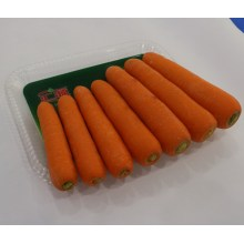 2016 High Quality Fresh Carrot for Dubai