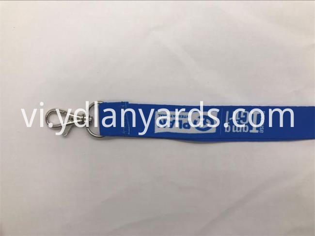 blue color lanyards