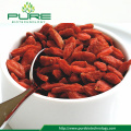 Ningxia Dried Goji berries /Gou Qi/Lycium barbarum