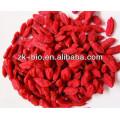Bayas de Goji de Ningxia de alta calidad china