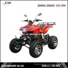 EEC 200cc / 250cc ATV refroidi à l'air, Quad ATV refroidi à l'eau avec homologation CEE