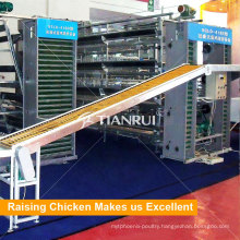 Full Automatic Egg Collect Machine For Layer Battery Cage