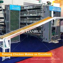 O ovo automático completo recolhe a máquina para a gaiola da bateria da camada