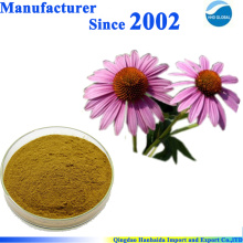 Approvisionnement d'usine de GMP 100% pur Extrait normal d'echinacea purpurea