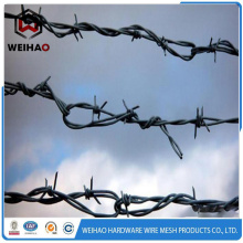 sharp military used barbed wire