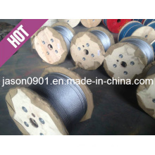 Steel Rope, Steel Wire Rope, Wire Rope, Galvanized Steel Wire Rope