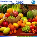Großhandel Top-Qualität Methyl-Vitamin B12 mit bestem Preis