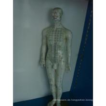 Akupunkturpunkt-Modell