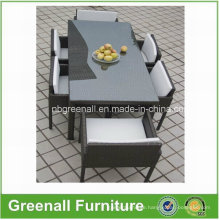 Garden Furniture Outdoor Furniture Rattan Table and Chair (GN-8658D)