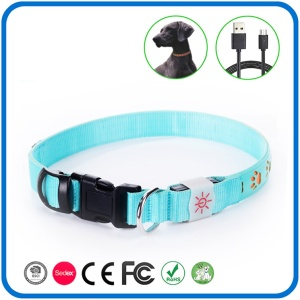 Nylon Leather Led Light Up Hund halsband
