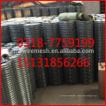 galvanized welded mesh export high quality 1/2 welded wire mesh 2016