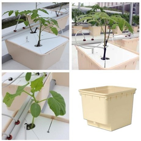 Dutch Bucket Grow Kits For Tomato, Cucumber/ Peppers