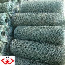 PVC revestido / galvanizado red de alambre hexagonal / malla (fábrica)