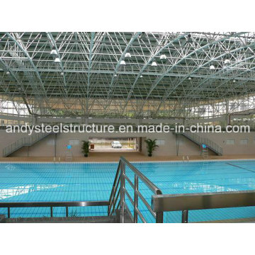 Professional Steel Space Frame Swimming Pool Cover
