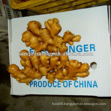 100g fresh ginger