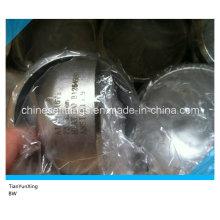 Carrelage en acier inoxydable ANSI B16.9 316ti Cap