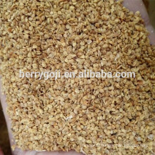 Goji berry seed/NQ-1/NQ-7 goji seeds/For plant