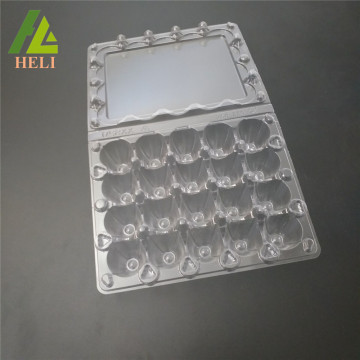 Plastic 20 Cells Quail Eggs Compartment Container